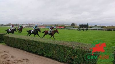 Courses et quinté à Saint-Cloud
