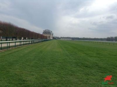 Courses et quinté à Chantilly