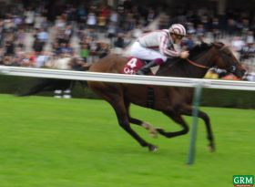 CIRRUS DES AIGLES, champion au galop